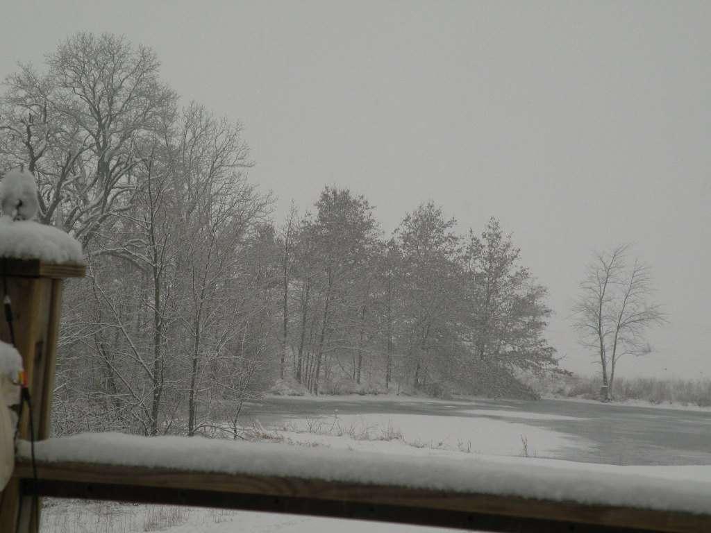 snowe002.jpg
